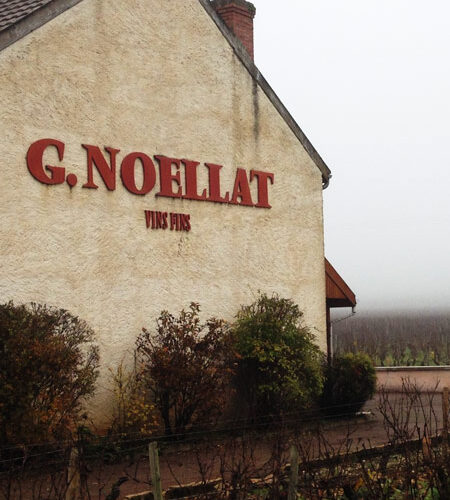 Domaine-Georges-Noellat1